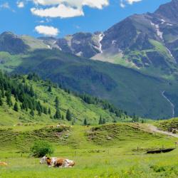 Gasteinské údolí